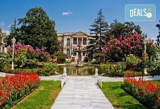 Екскурзия през април до приказно красивия Фестивал на лалето в Истанбул - 2 нощувки със закуски в хотел 3*, транспорт от Бургас, пътни и гранични такси и водач! - Снимка 6