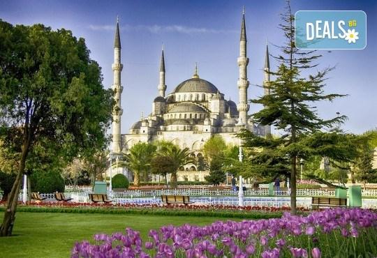 Последни места за Фестивала на лалето в Истанбул на специална цена! 2 нощувки със закуски в хотел 2/3*, транспорт и екскурзовод! - Снимка 1