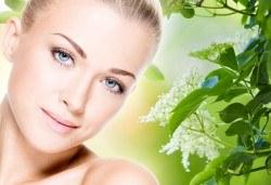 Нежна грижа за Вашата кожа! Терапия за лице с фитостволови клетки в козметично студио Ма Бел! - Снимка