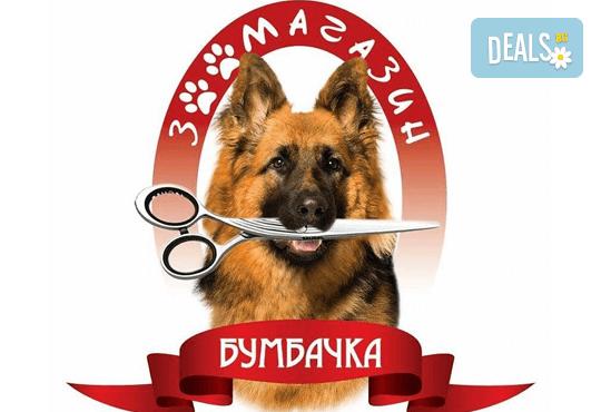 СПА пакет за Вашия домашен любимец от Art Grooming Studio Bumbachka - къпане, подстригване или цялостна промяна на кученца! - Снимка 4