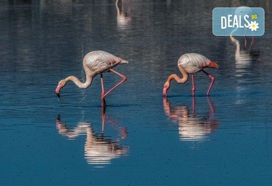 Еднодневна екскурзия на 24.06. до природния парк Керкини в Гърция - транспорт и екскурзовод от агенция Солео 8! - Снимка 4
