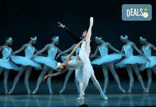Ексклузивно в Кино Арена - най-любимия класически балет! ЛЕБЕДОВО ЕЗЕРО, спектакъл на Кралския балет в Лондон, на 18.07., 21.07. и 22.07., в киносалоните в страната - Снимка 3