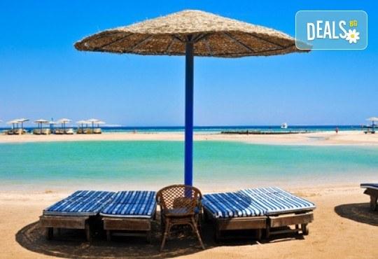 Почивка в Египет през есента! 7 нощувки на база All Inclusive в Seagull Beach Resort 4*+ в Хургада, самолетен билет, летищни такси и трансфери - Снимка 29