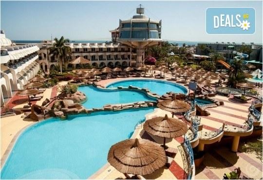 Почивка в Египет през есента! 7 нощувки на база All Inclusive в Seagull Beach Resort 4*+ в Хургада, самолетен билет, летищни такси и трансфери - Снимка 2