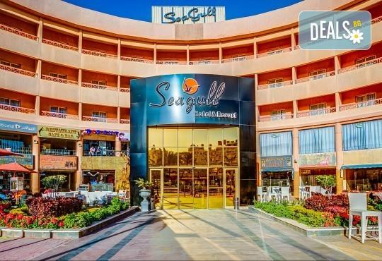 Почивка в Египет през есента! 7 нощувки на база All Inclusive в Seagull Beach Resort 4*+ в Хургада, самолетен билет, летищни такси и трансфери - Снимка 14