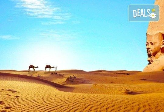 Почивка в Египет през есента! 7 нощувки на база All Inclusive в Seagull Beach Resort 4*+ в Хургада, самолетен билет, летищни такси и трансфери - Снимка 7