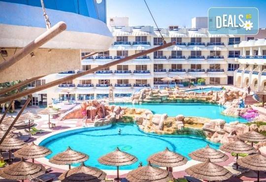 Почивка в Египет през есента! 7 нощувки на база All Inclusive в Seagull Beach Resort 4*+ в Хургада, самолетен билет, летищни такси и трансфери - Снимка 22