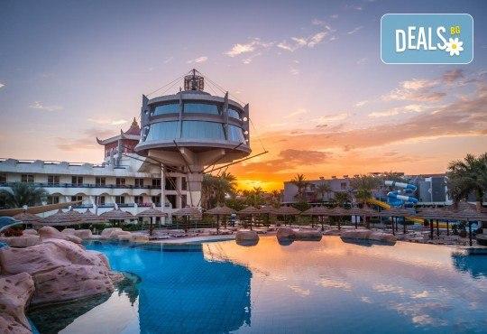 Почивка в Египет през есента! 7 нощувки на база All Inclusive в Seagull Beach Resort 4*+ в Хургада, самолетен билет, летищни такси и трансфери - Снимка 23
