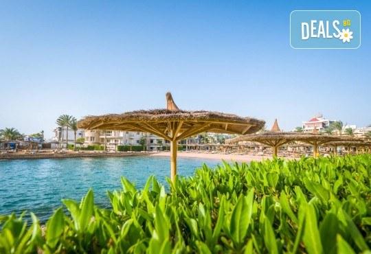 Почивка в Египет през есента! 7 нощувки на база All Inclusive в Seagull Beach Resort 4*+ в Хургада, самолетен билет, летищни такси и трансфери - Снимка 27