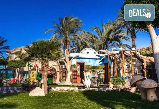 Почивка в Египет през есента! 7 нощувки на база All Inclusive в Seagull Beach Resort 4*+ в Хургада, самолетен билет, летищни такси и трансфери - Снимка 25