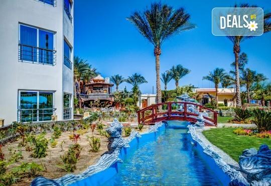 Почивка в Египет през есента! 7 нощувки на база All Inclusive в Seagull Beach Resort 4*+ в Хургада, самолетен билет, летищни такси и трансфери - Снимка 21