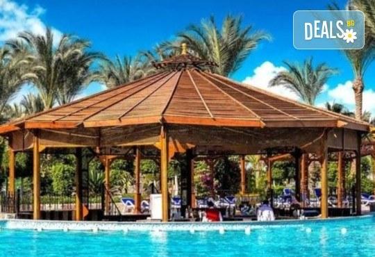 Почивка в Египет през есента! 7 нощувки на база All Inclusive в хотел Hawaii Le Jardain Aqua Park 5* в Хургада, самолетен билет, летищни такси и трансфери - Снимка 6