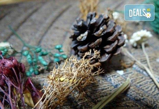 Антицелулитен масаж с масло от хвойна - ръчен, с вендуза или с бамбук, на зони по избор, 50 мин., в масажно студио REVIVE, София - център - Снимка 8