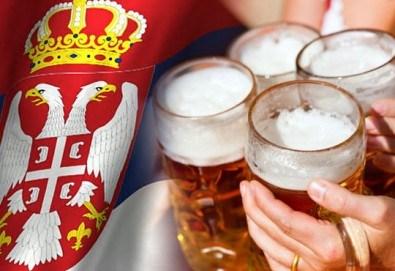 Екскурзия до Белград и посещение на Beer Fest 2018! 2 нощувки със закуски, транспорт, панорамна обиколка на Белград и посещение на Ниш! - Снимка