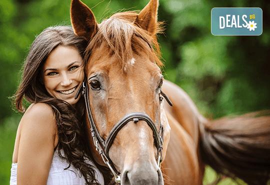 Подарете си различно преживяване с 45 минути конна езда с водач от конна база София – Юг, Драгалевци! - Снимка 1