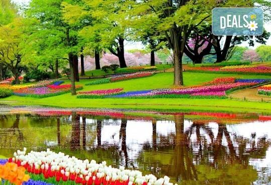 Екскурзия до Холандия за Фестивала на лалетo и парада на цветята! 9 нощувки и закуски, транспорт и посещение на Амстердам, Будапеща, Прага, Залцбург, Мюнхен и Брюксел! - Снимка 6
