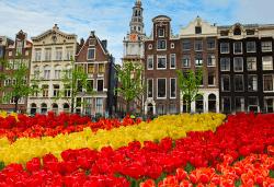 Ранни записвания за 2019-та на супер цена само до 30.09.! Екскурзия до Холандия за Фестивала на лалетата с 9 нощувки и закуски, транспорт и посещение на Амстердам, Будапеща, Прага, Залцбург, Мюнхен и Брюксел! - Снимка