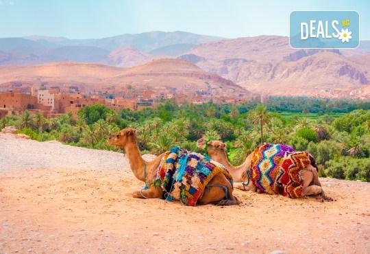 Самолетна екскурзия до Мароко през октомври с България Травъл! 6 нощувки със закуски и вечери в хотел 3*, билет, летищни такси, трансфери, водач и програма в Маракеш - Снимка 1