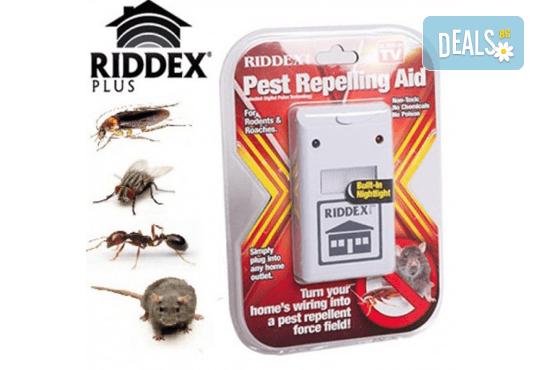 Вземете Riddex plus - сигурна защита от мишки, плъхове, хлебарки, бълхи и мравки, от Магнифико! - Снимка 1