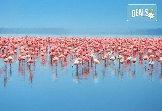 За 1 ден до природен резерват Лимни Керкини и Кукуш, Гърция! Транспорт, водач и програма от Дениз Травел! - Снимка 1