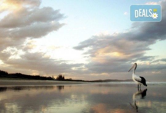 За 1 ден до природен резерват Лимни Керкини и Кукуш, Гърция! Транспорт, водач и програма от Дениз Травел! - Снимка 2