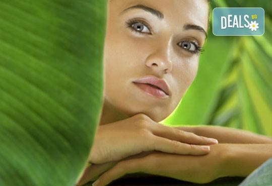 Колагенова мезотерапия или антиакне терапия с био козметика на водещата немска фирма Dr. Spiller в козметично студио Beauty! - Снимка 1