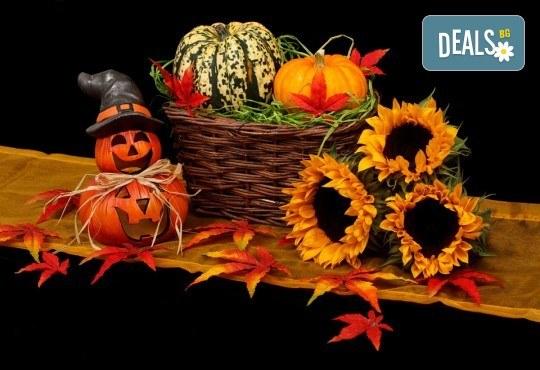Щуро парти за Хелоуин за до 15 възрастни или деца с аниматор-диджей, музикално оформление, хелоуински аксесоари, костюми под наем и хелоуински късмети! - Снимка 2