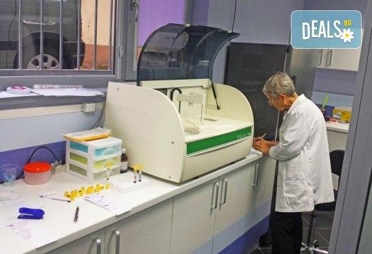 Пакет от изследвания или изследване на показатели по избор - пълна кръвна картина, холестерол, чернодробни показатели, креатин, глюкоза и други в ДКЦ Alexandra Health! - Снимка 2