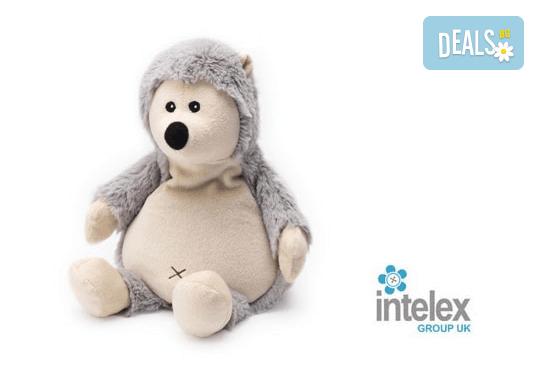 Плюшено нагряващо се Таралежче Cozy Plush Hedgehog от Intelex - Снимка 1