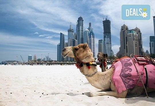 Last minute! Дубай - светът на мечтите, през ноември! 5 нощувки със закуски, самолетен билет, летищни такси, чекиран багаж, трансфери и обзорна обиколка! - Снимка 9