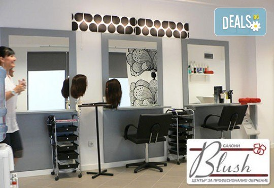 За празниците! Боядисване с боя на клиента, подстригване, арганова терапия Stapiz, заглаждащ флуид и прическа в Салон Blush Beauty! - Снимка 5
