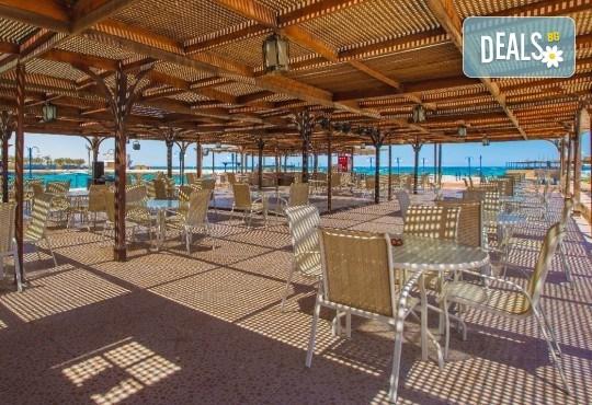 Петзвездна Нова Година в Египет, Хургада, в хотел Emerald Resort and SPA, с Дрийм Холидейс! Самолетен билет, 7 нощувки на база All Inclusive, трансфери - Снимка 8