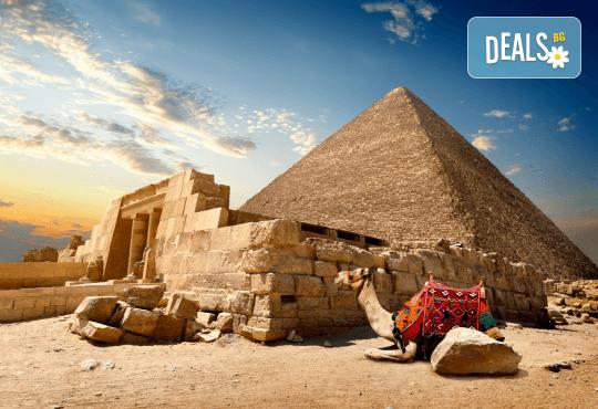 Петзвездна Нова Година в Египет, Хургада, в хотел Emerald Resort and SPA, с Дрийм Холидейс! Самолетен билет, 7 нощувки на база All Inclusive, трансфери - Снимка 12