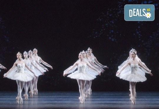 Ексклузивно в Кино Арена! БАЯДЕРКА  - спектакъл на Кралския балет в Лондон с участието на най-добрите солисти, на 26, 29 и 30 декември, в кината в София! - Снимка 3