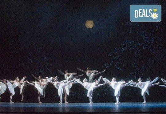 Ексклузивно в Кино Арена! БАЯДЕРКА  - спектакъл на Кралския балет в Лондон с участието на най-добрите солисти, на 26, 29 и 30 декември, в кината в София! - Снимка 7