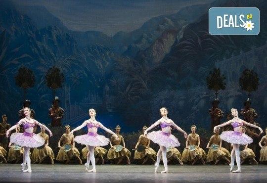 Ексклузивно в Кино Арена! БАЯДЕРКА  - спектакъл на Кралския балет в Лондон с участието на най-добрите солисти, на 26, 29 и 30 декември, в кината в София! - Снимка 2
