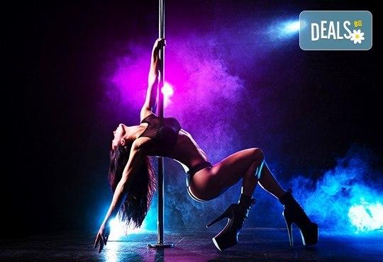 Еротичен таньор или таньорка с шоу програма за Вашето парти