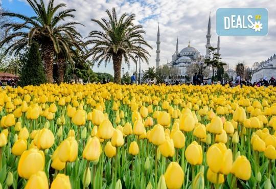 Посетете приказния Фестивал на лалето в Истанбул през април! 2 нощувки със закуски в хотел 3*, транспорт и посещение на църквата Свети Стефан! - Снимка 1