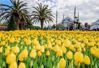 Посетете приказния Фестивал на лалето в Истанбул през април! 2 нощувки със закуски в хотел 3*, транспорт и посещение на църквата Свети Стефан!