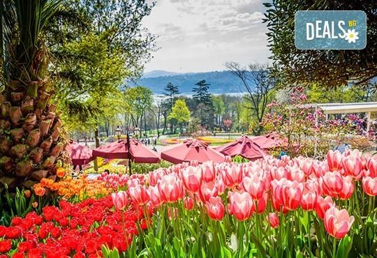 Фестивал на лалето в Истанбул 2019 с Караджъ Турс, от Варна и Бургас! 2 нощувки със закуски, транспорт, екскурзовод, посещение на Емирган Парк, посещение на Одрин - Снимка 3