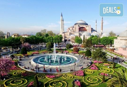 Фестивал на лалето в Истанбул 2019 с Караджъ Турс, от Варна и Бургас! 2 нощувки със закуски, транспорт, екскурзовод, посещение на Емирган Парк, посещение на Одрин - Снимка 4