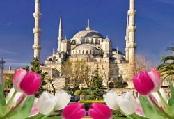 Фестивал на лалето в Истанбул 2019 с Караджъ Турс! 2 нощувки със закуски в хотел 4*, транспорт, екскурзовод, посещение на Емирган Парк, посещение на Одрин - Снимка