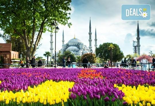 Фестивал на лалето в Истанбул: 2 нощувки и закуски в хотел 4*, транспорт