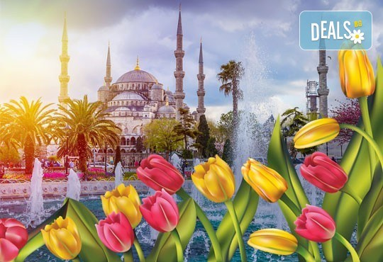 Екскурзия за Фестивала на лалето в Истанбул с Дениз Травел! 2 нощувки със закуски, транспорт, водач и бонус посещения - Снимка 1