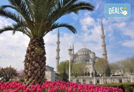 Фестивал на лалето в Истанбул през април! 2 нощувки и закуски в Hotel Bulvar Palas 4*, транспорт, водач от агенцията и включени пътни такси! - Снимка 1