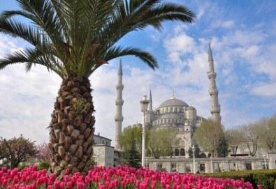 Фестивал на лалето в Истанбул през април! 2 нощувки и закуски в Hotel Bulvar Palas 4*, транспорт, водач от агенцията и включени пътни такси! - Снимка