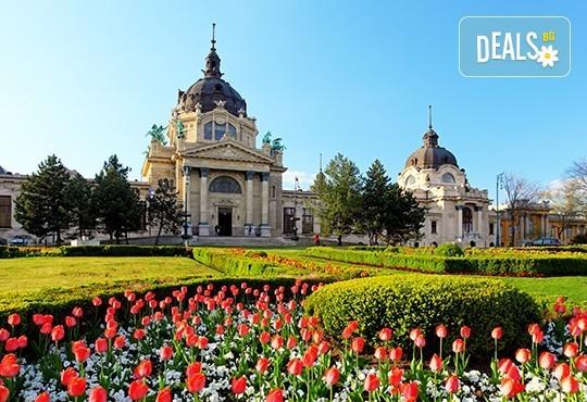 През пролетта до Будапеща, Прага и Виена: 5 нощувки и закуски, транспорт