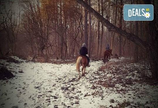 Урок по езда сред природата за двама с инструктор и екипировка от Ранчо Thracian Spirits! - Снимка 7
