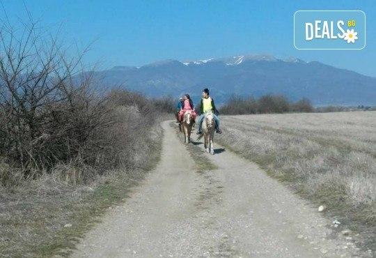 Урок по езда сред природата за двама с инструктор и екипировка от Ранчо Thracian Spirits! - Снимка 8