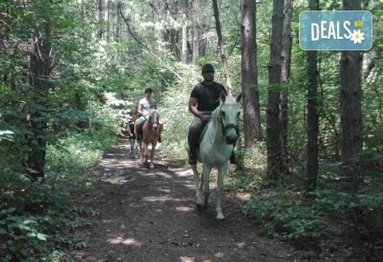 Урок по езда сред природата за двама с инструктор и екипировка от Ранчо Thracian Spirits! - Снимка 4